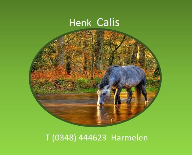 Henk Calis