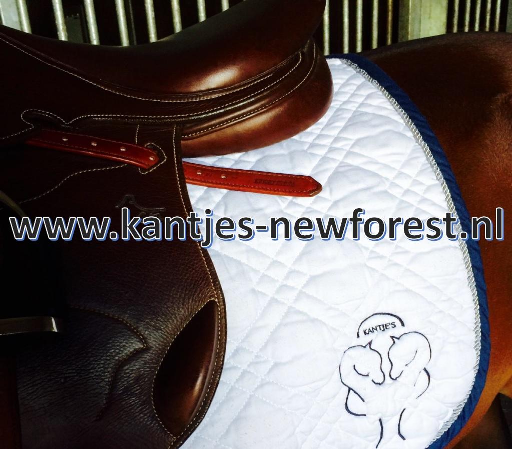Kantjes New Forest