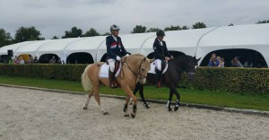 horse event 1
