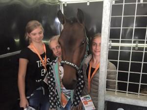 horse event 5