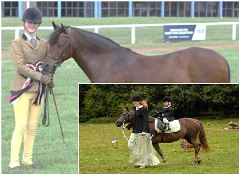 RK Zuid-West Young Handlers & Leading Rein