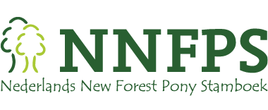 Nederlands New Forest Pony Stamboek